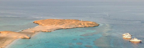 Colona Divers get of the beaten track and discover the Red Sea